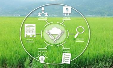 农事管理系统